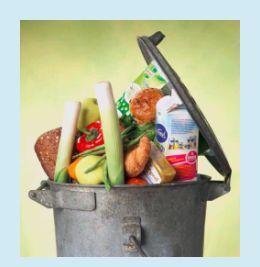 Bron: Kennisonline: Zes onderwijsinstellingen zijn in 2009 aan de slag gegaan om het thema voedselverliezen in het groene onderwijs op te nemen.  Lees meer over de achtergronden van KIGO-project KIGO/2010/01-11 en WURKS-project 2010-14.     Welke rol kan het onderwijs spelen bij de beperking van voedselverliezen? Een van de activiteiten voor het ontsluiten van informatie is het beschikbaar maken van een bibliotheek…