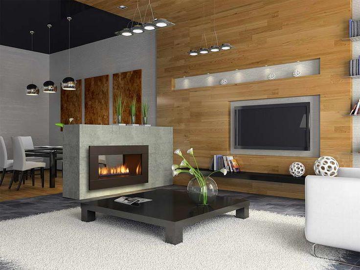 Best 20 Contemporary gas fireplace ideas on Pinterest Modern