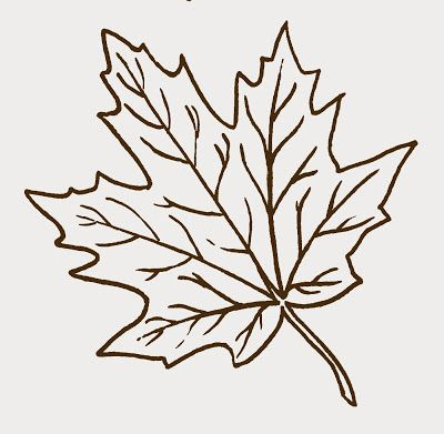Free clip art ~ maple leaf