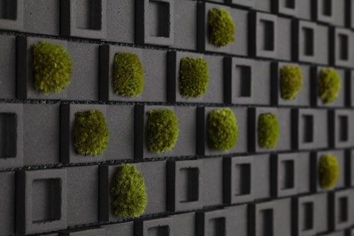 dent cube moss wall from inax