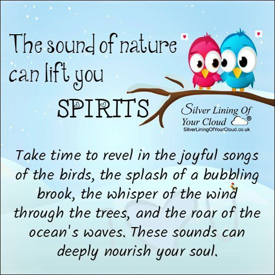 The sounds of Nature can lift your spirits... Take time to revel in the joyful songs of the birds, the splash of a bubbling brook, the whisper of the wind through the trees, and the roar of the ocean's waves. These sounds can deeply nourish your soul. ..._More fantastic quotes on: https://www.facebook.com/SilverLiningOfYourCloud  _Follow my Quote Blog on: http://silverliningofyourcloud.wordpress.com/