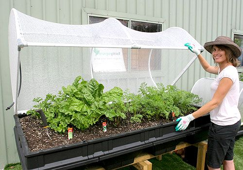 However, if you want to save time and wish to have a nice vegepod for your balcony, you can visit the website of Vegepod, which has specially developed garden beds for Australian climate. GO here: http://www.vegepod.com.au