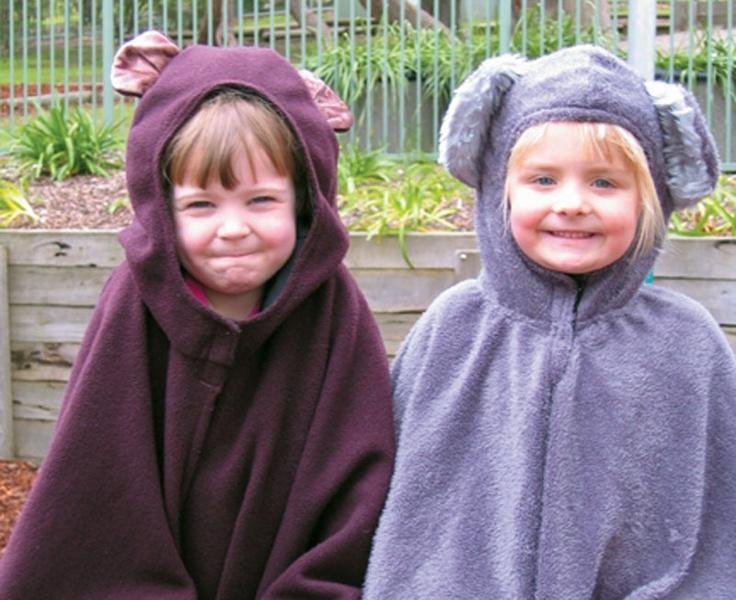 Wombat or Koala - Wombat Stew, Wombat Devine, Diary of a Wombat, Muddle-Headed Wombat, Koala Lou, Blinky Bill etc...