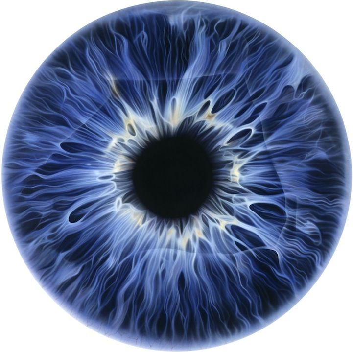 Extremely detailed oil paintings of eyes by Marc Quinn