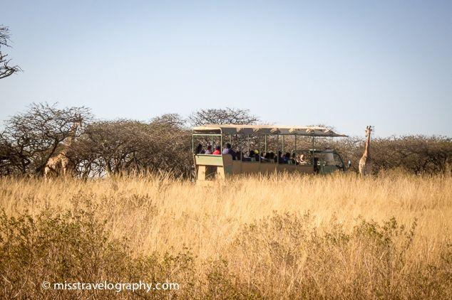 Tour at Tala Game Reserve, KwaZulu-Natal, South Africa