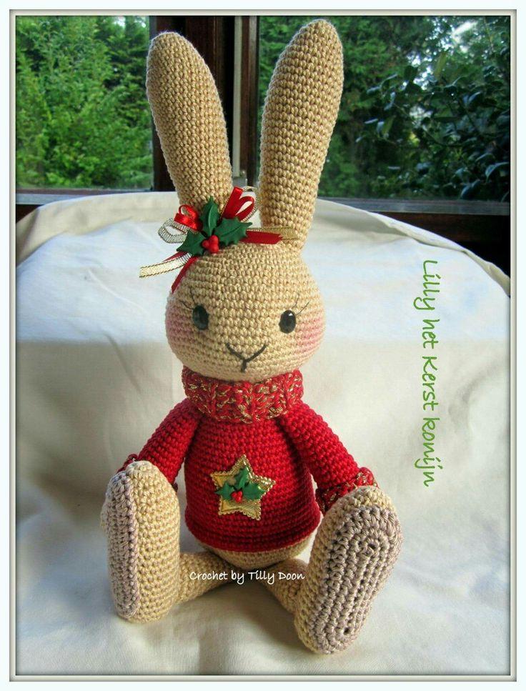 Haasje Lilly in kerstuitviering van Kristel Droog