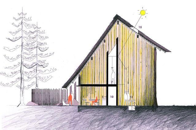 Peter Stutchbury Architecture diagrammatic cross section