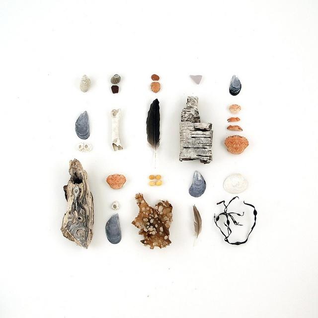 the prettiest beach finds