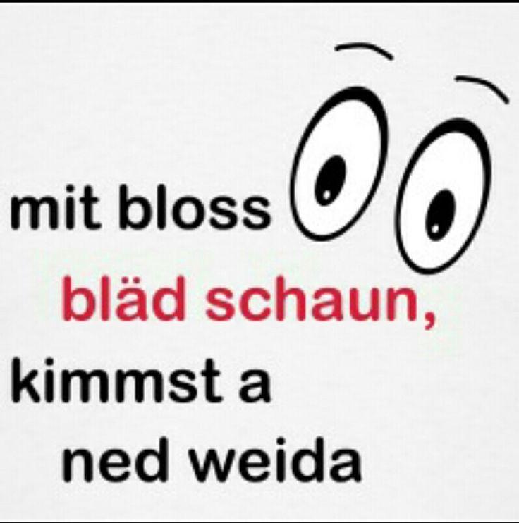 15 pins zu bayerische sprüche, die man gesehen haben muss