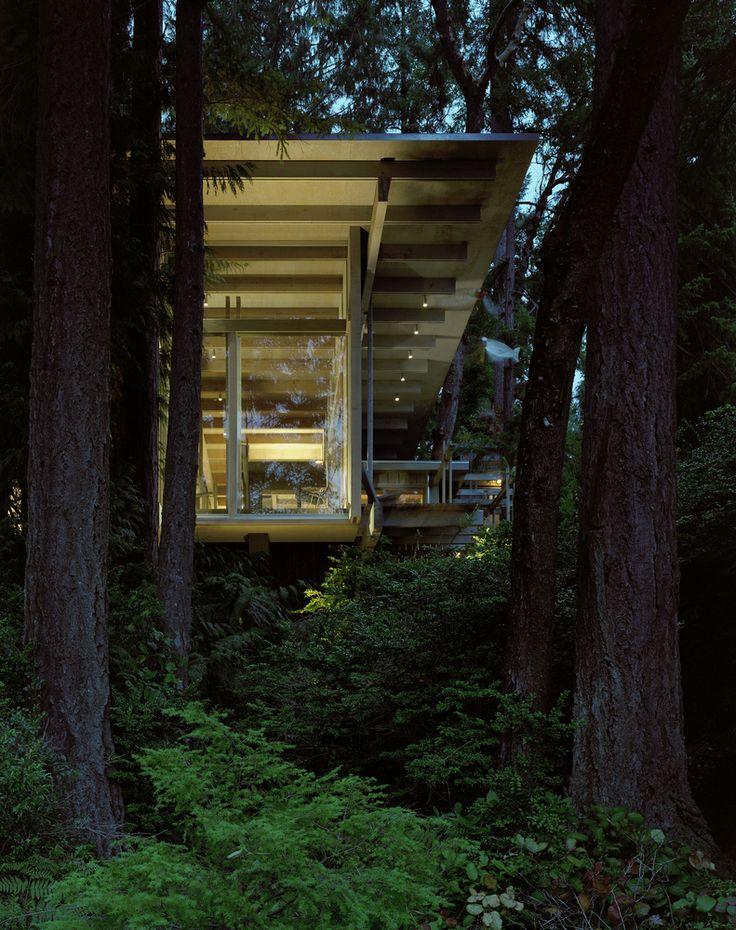 Gallery of Cabin at Longbranch / Olson Kundig - 21