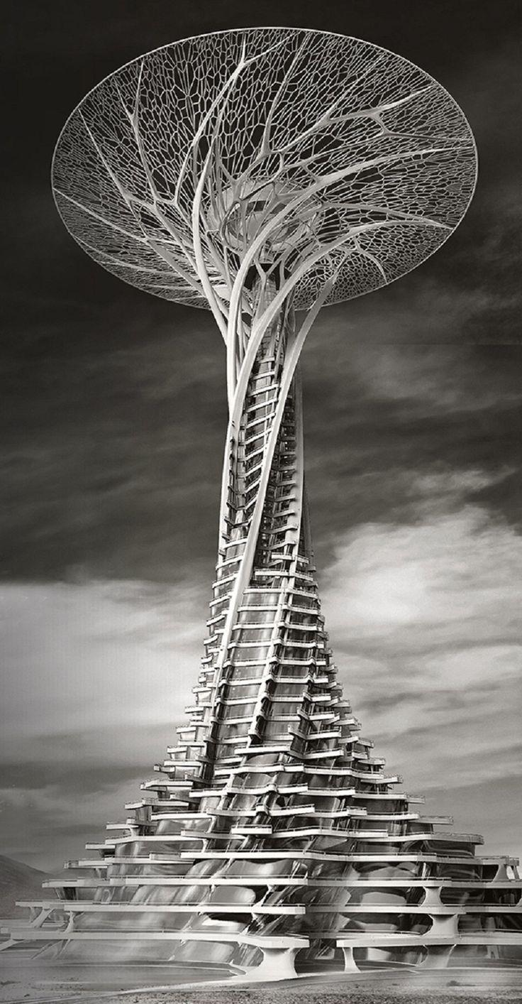 les Sand Babel sont des structures écologiques au cœur du désert ...