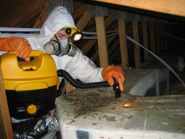OCP Termite & Pest Control Pasadena Exterminator has built our reputation as a pest control service and exterminator in Pasadena doing an excellent job at an affordable price. For quick response, effective pest control treatment and great pricing call us at (626) 243-7775 for a quote. Keep your home pest free all year long with our regular pest control services.