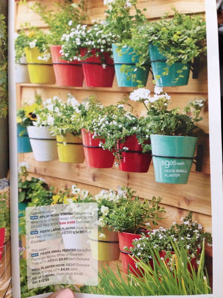 crate and barrel wall planter hooks mom 39 s garden pinterest crate and barrel crates and hooks. Black Bedroom Furniture Sets. Home Design Ideas