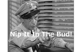 barney fife quotes - Google Search