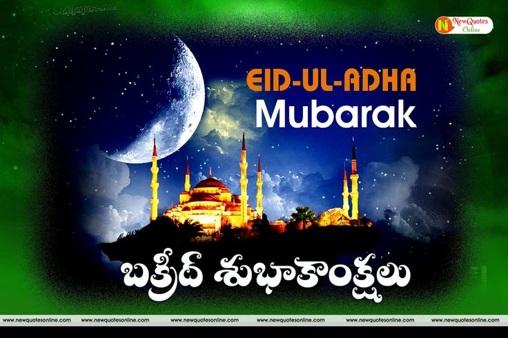 A Very Happy Eid Ul- Adha Mubarak (Bakrid) Wishes Images Greetings  Pictures In…