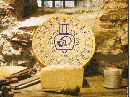 Se marcó el alto Valle de Mut DOP Brembana tiene características bien definidas en la especificación  de la producción: es un queso semi-cocido con un contenido mínimo de grasa del 45% en la  seca, producida exclusivamente con leche entera de vaca de un o dos ordeños y débil acidez natural.  La forma cilíndrica de 30 a 40 cm de diámetro y con lados rectos o ligeramente convexos, altas 8- 10 cm, con un peso de 8 a 12 kg.  La corteza es delgada, de color amarillo pálido en las formas jóvenes y…