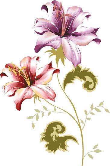 Kompozycje kwiatów narysowane na przezroczystym tle