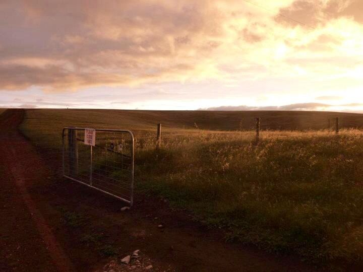 Farm Gate, Kangaroo Island South Australia. Photo, Tania Cavaiuolo