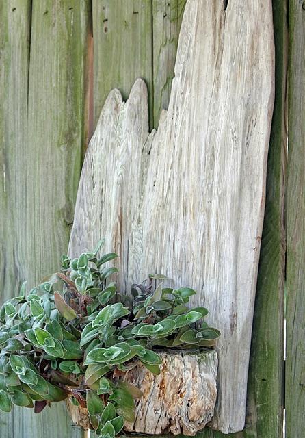 Wood garden pot