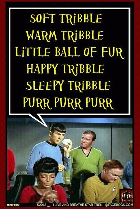 Star Trek/Big Bang Theory mashup of Sheldon Cooper's favorite soothing song, 'Soft Kitty,' done with a Tribbles theme. Excellent. Don't think the Klingons will be singing it though... awesome!!!