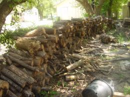 25 ways to be more self reliant Hens Of The Woods, Ideas, Living, Self Sufficient, Wood Stoves, Self Reliant, Reliant Today, Homesteads Survival, Disasters Preparedness