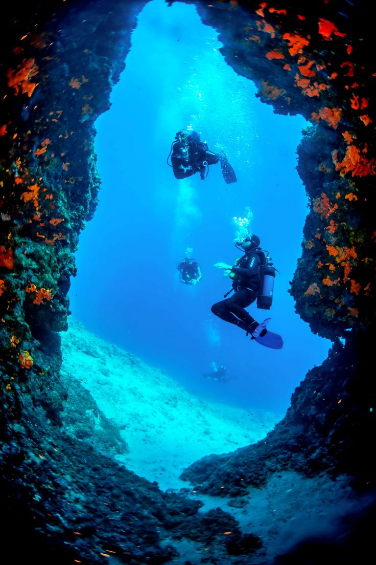 Cave scuba diving in Skopelos island is so popular. Plenty of different places to visit