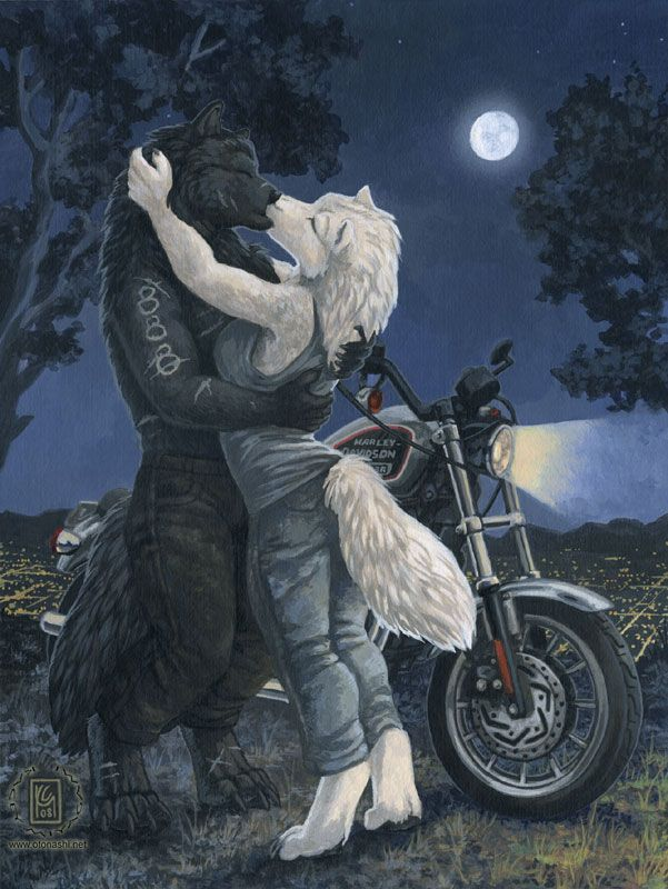 89 Best images about Best Anthro (Furry) Art on Pinterest ...