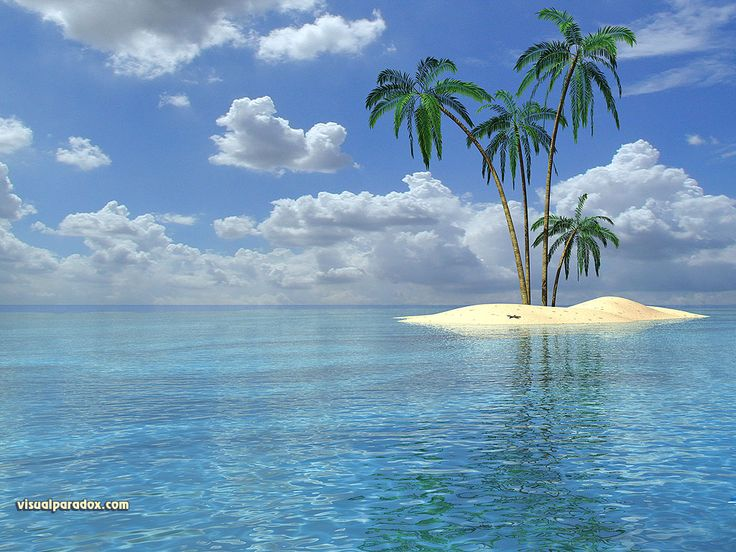 tropical images - Yahoo Search Results