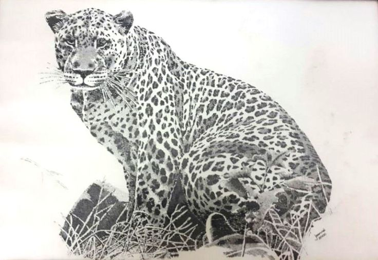 Leopard... One of Africas Big Five Medium: Black Rotring Ink Pen Technique: Stippling Size: A3 Available!