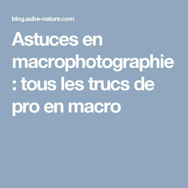 Astuces en macrophotographie : tous les trucs de pro en macro