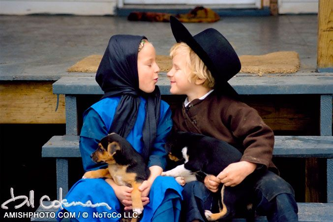 2579 pups a young amish boy ang girl make kissy faces with uppies in their laps