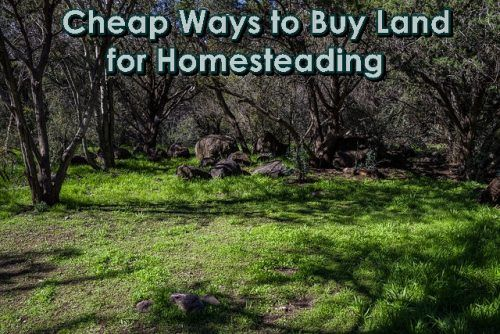 Best 25 2 acre homestead ideas on pinterest farm plans for Where to buy cheap land for homesteading