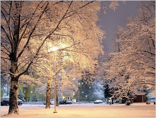 Finland. I'd walk in the cold for a sight like this.