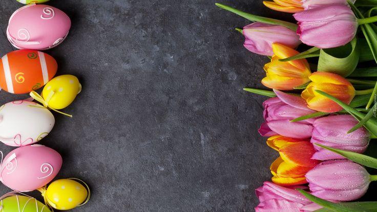 Wielkanoc, Pisanki, Kolorowe, Tulipany, Szare Tło