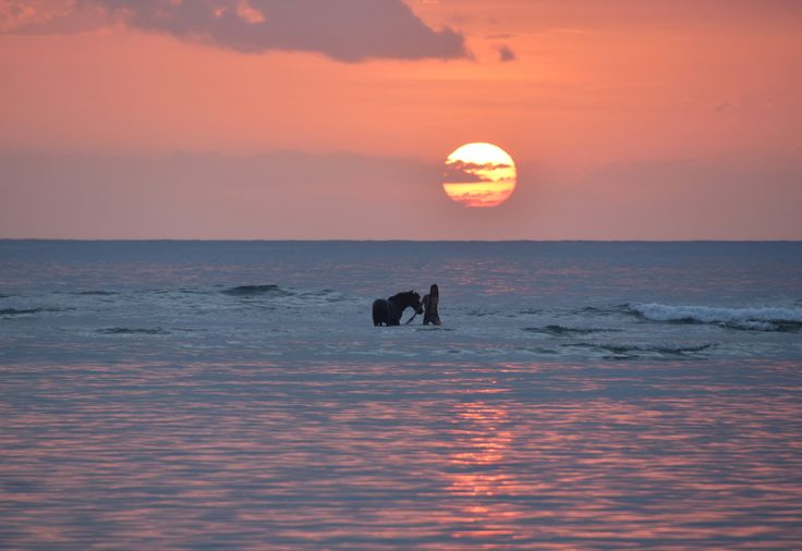 Gili islands, Indonesia - null