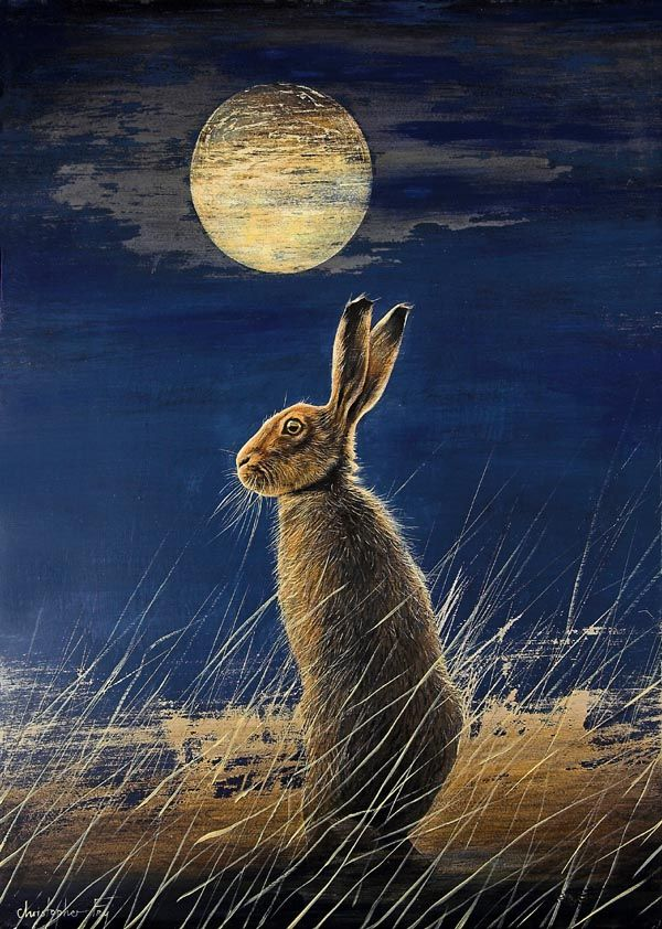 Midnight hare by Christopher Fry