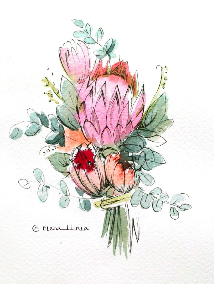 Illustration by Elena_linia. #illustration #flower #drawing #art #watercolor #sketch