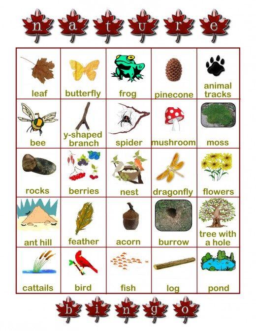 nature scavenger hunt bingo