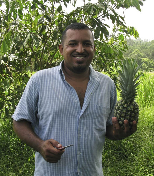 Abraham happily anticipates tucking into a fresh and totally organic Pineapple grown on our Inga alley plots at CURLA.