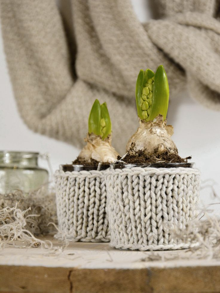 ... DIY knitted plant pot ...