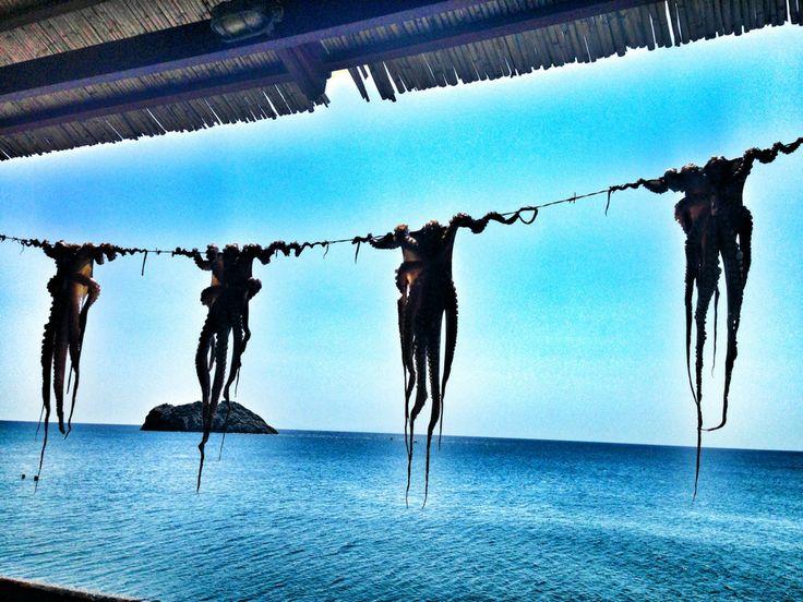 Παραλία Σκάλας Ερεσού (Beach of Skala Eressos)