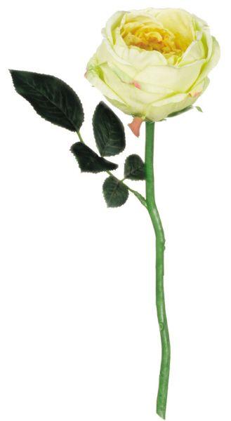 Yellow Cream English Rose Stem | Faux Wedding Flowers | Afloral.com