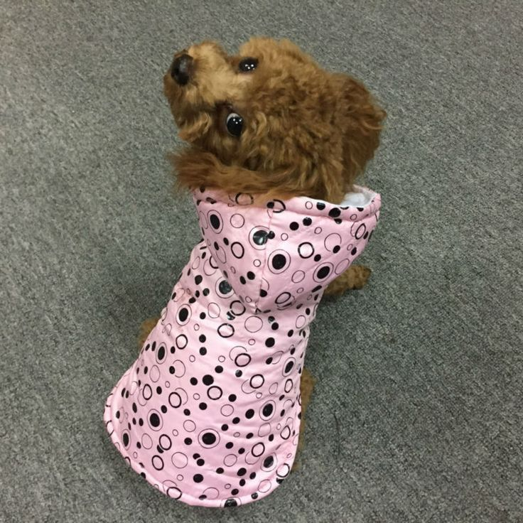 Winter Small Puppy Coat Jacket Pet Dog Clothes Dog Hoodies Costumes Cute Roupas de Cachorro Abrigo de Perro Puppy Clothes #4 // FREE Shipping //     Buy one here---> https://thepetscastle.com/winter-small-puppy-coat-jacket-pet-dog-clothes-dog-hoodies-costumes-cute-roupas-de-cachorro-abrigo-de-perro-puppy-clothes-4/    #dog #dog #puppy #pet #pets #dogsitting #ilovemydog #lovedogs #lovepuppies #hound #adorable #doglover
