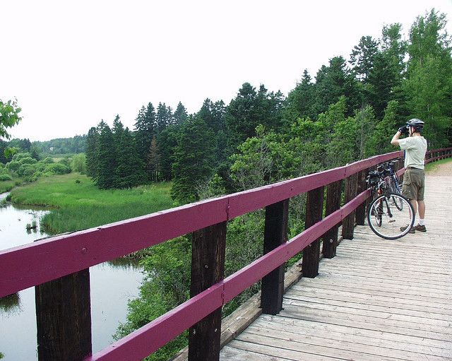 Cardigan to Georgetown and Montague on Confederation Trail