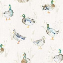 Paddling Duck Wallpaper