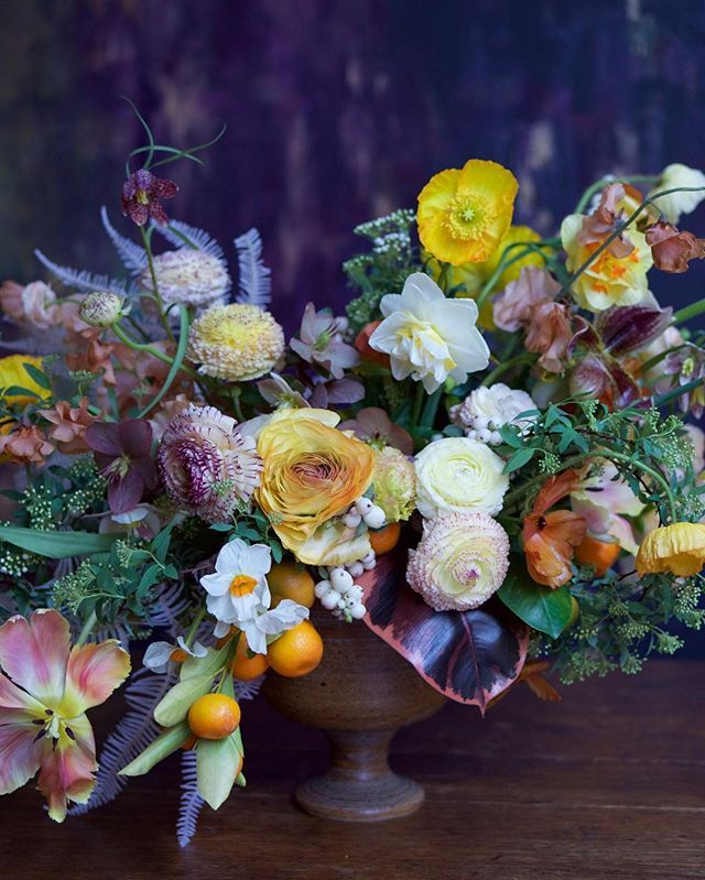 You all are always asking me to name the flowers in my arrangements, so here it is: spirea, citrus, snowberry, fern, hellebore, ranunculus, poppy, fritillaria, sweet pea, daffodil, lady slipper and parrot tulip. Captured by @nruphoto #tulipina