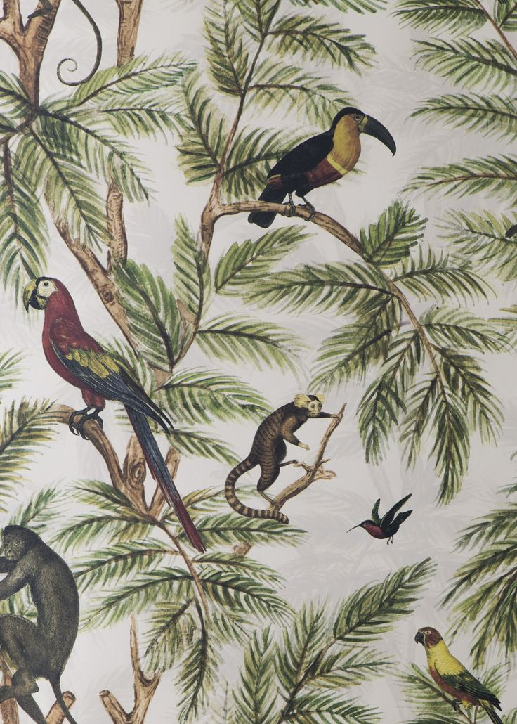 Large Scale Wallpaper Jungle Wallpaper Osborne And Little - Google Search