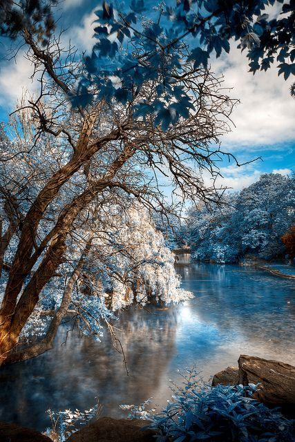 Frozen pond, Dublin St Stephen's Green Park