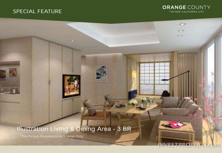 Orange County Apartment Interior Design