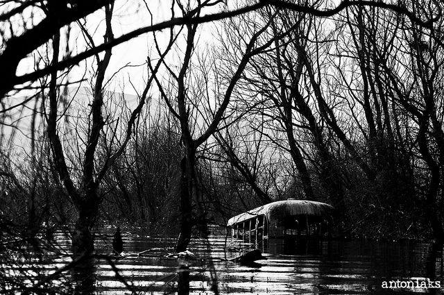 abandoned bus , doirani lake